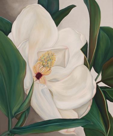 Magnolia 2a