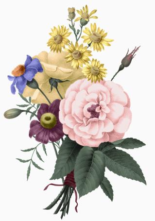 Cassel Bouquet