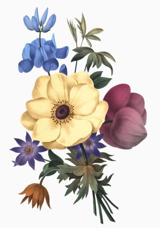 Etienne Bouquet