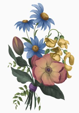 Calais Bouquet