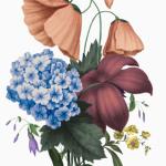 Lyon Bouquet