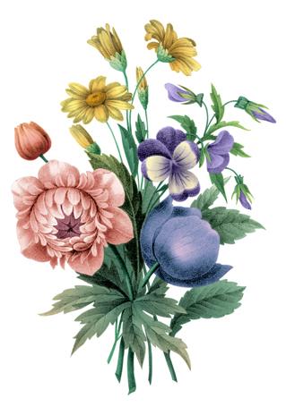 Ducey Bouquet