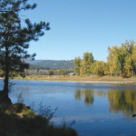 Bitterroot River 1