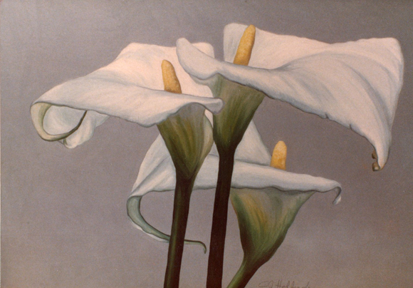 Lilies #1 oil 42x36
