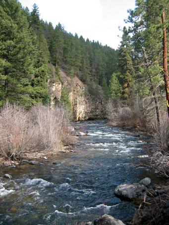 Rattlesnake Creek 1