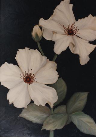 Roses #2 42x36 oil