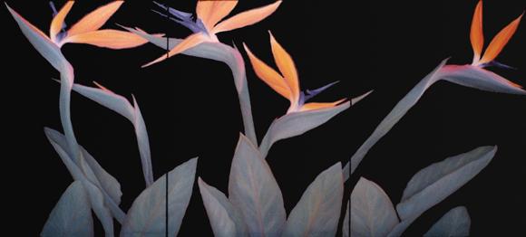 paradise #9 oil triptych 72x30