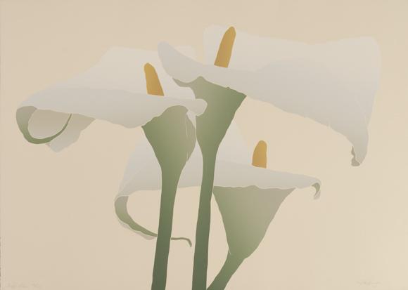 Buff Lilies