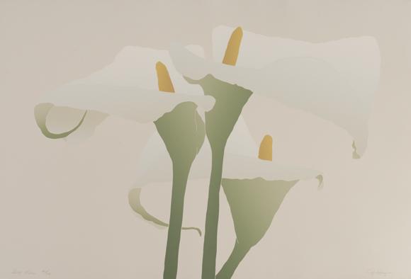 Grey Lilies