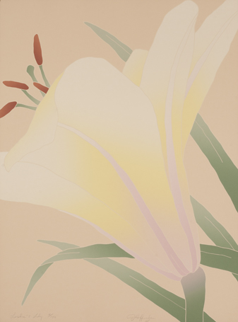 Leslie's Lily